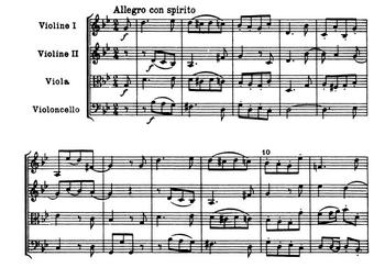 Haydnop3331
